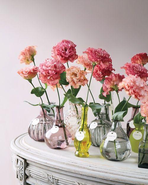 flores-4